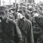 Депутат Киевсовета просит выделить землю «чернобыльцам»