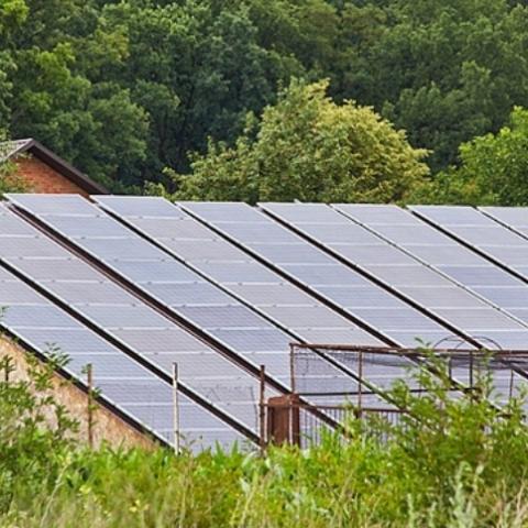 Владелец солнечной электростанции зарабатывает до 20 тыс. грн. Опыт жителя Киевщины