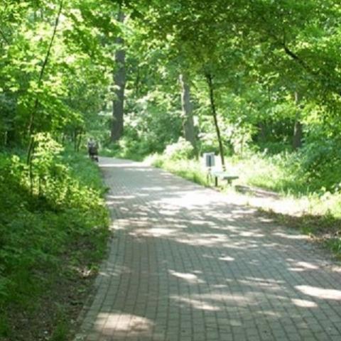 Какие столичные парки капитально отремонтируют