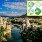 Киев возглавил рейтинг самых зеленых городов Европы