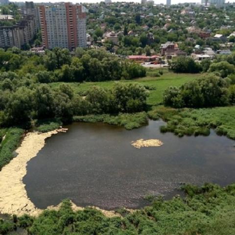 Киевсовет рассмотрит петицию о спасении Совских прудов