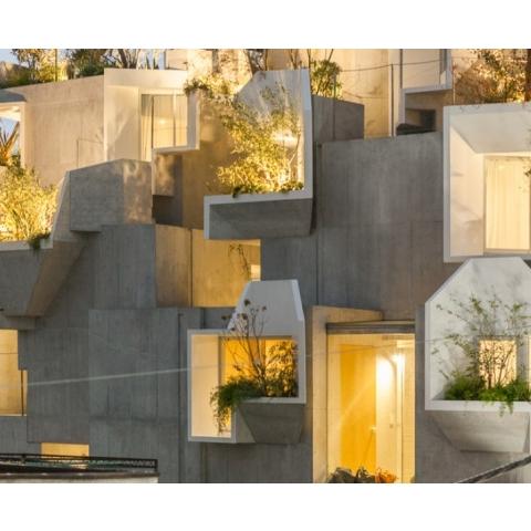 Концепция жилого дома на основе структуры дерева