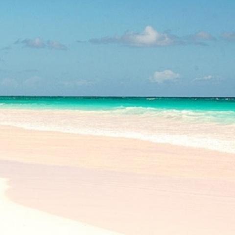 На киевские пляжи завезли песок с Багамских островов