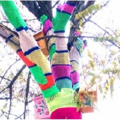 На Позняках деревья нарядили  в яркие шарфы