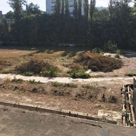 На вулиці Грушевського вирубали дерева для облагородження парку та стадіону