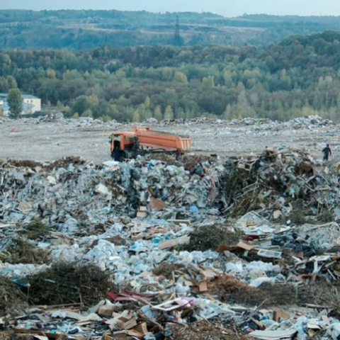 """Нардеп требует оградить """"Голосеевский"""" парк от мусора с полигона ТБО-6"""