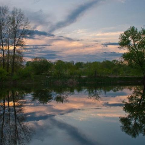 Объявлены тендеры на расчистку трех столичных озер