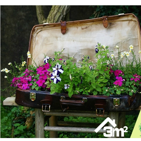Оголошено переможця конкурсу #я_садівник від 3m2 та КО  Київзеленбуд