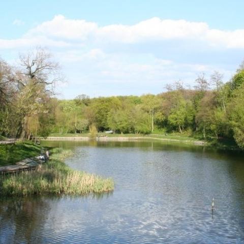 Проект благоустройства озер в парке Нивки может быть изменен