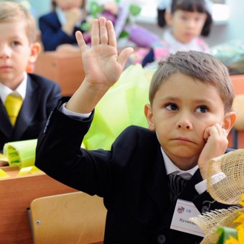 Почему жители Украинки выступили против создания школы в городе