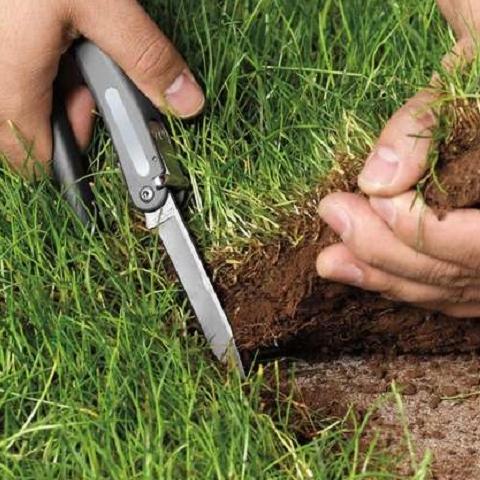 Прокуратура попытается вернуть государству 6 га земли в Буче
