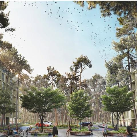 Riverside построит новый ЖК в пригороде