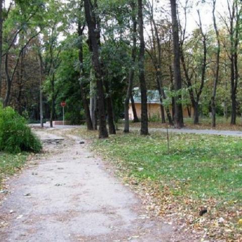 Сырецкий парк в Киеве планируют реконструировать