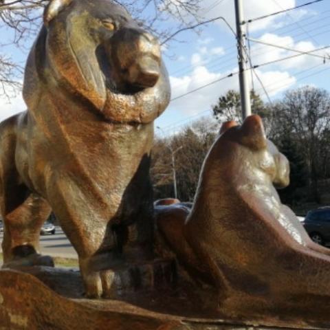 Статуи львов и бизона у зоопарка отреставрируют и перенесут на новое место