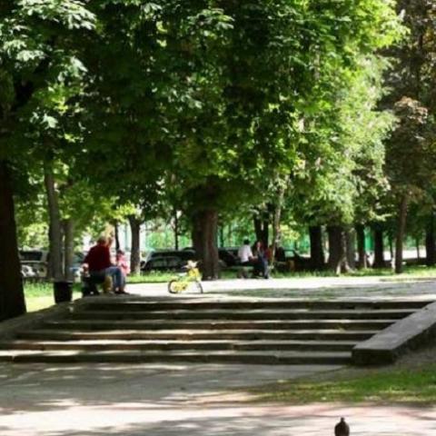 Статус сквера в Киеве получили еще 23 участка