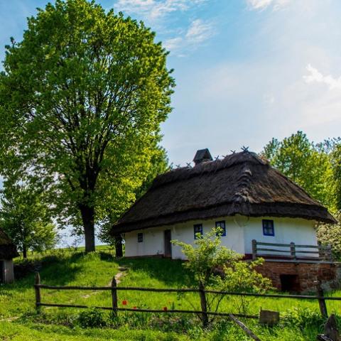 Суд вернул Киеву землю в Пирогово