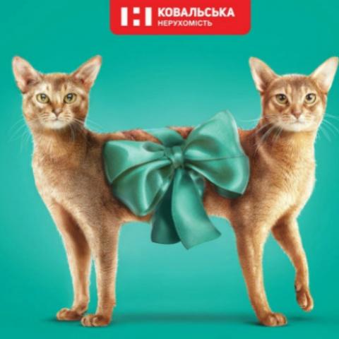 Топ-4 оригинальных рекламных кампаний столичных ЖК