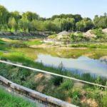 У парку «Відрадний» до ладу  приводять озеро