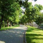 В четырех районах Киева появятся новые скверы