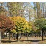 В столице обустроят еще 5 новых зеленых зон