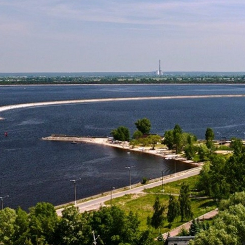 В Вышгороде незаконно отдали под стоительство земли лесного фонда
