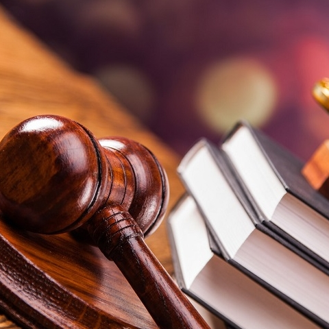 Верховный суд отменил передачу под жилую застройку зеленого участка